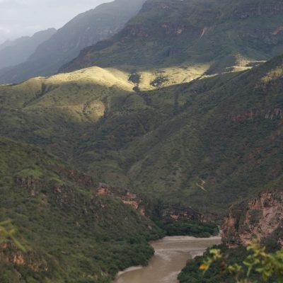 Kaffeplantage Peru
