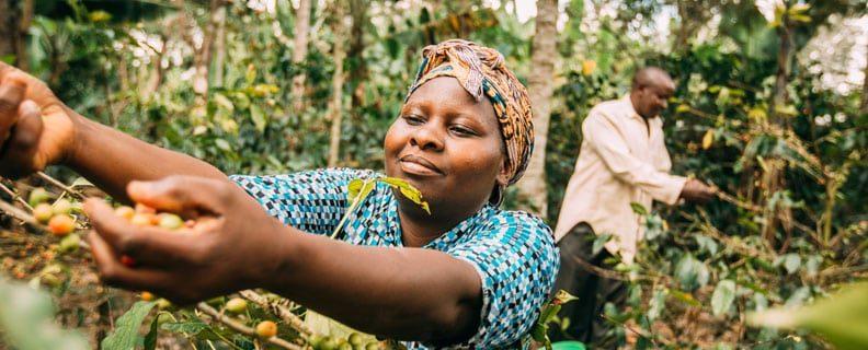 Young coffee farmer Tanzania